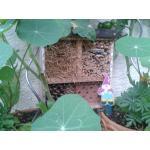 10_Insektennisthilfe.jpg