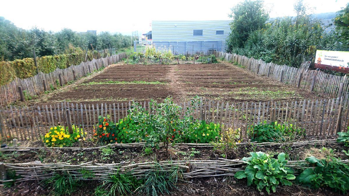 Der Garten Ende Oktober 2016